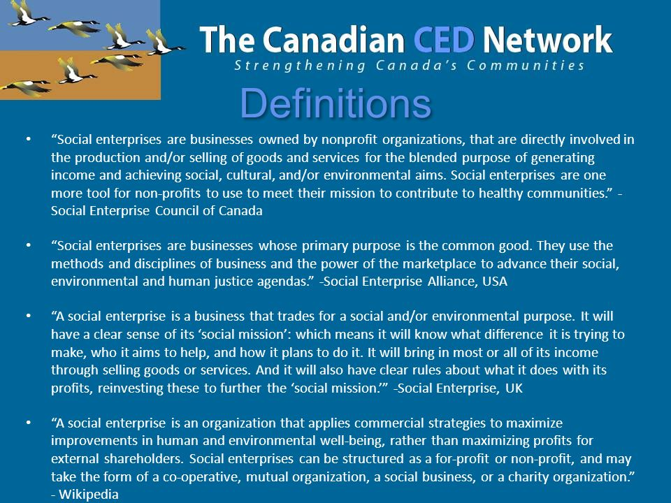 Definitions Social enterprises are businesses owned by nonprofit organizations, that are directly involved in the production and/or selling of goods and services for the blended purpose of generating income and achieving social, cultural, and/or environmental aims.