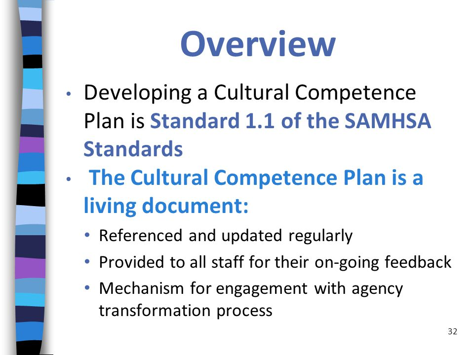 Overview Developing a Cultural Competence Plan is Standard 1.1 of the SAMHSA Standards The Cultural Competence Plan is a living document: Referenced and updated regularly Provided to all staff for their on-going feedback Mechanism for engagement with agency transformation process 32