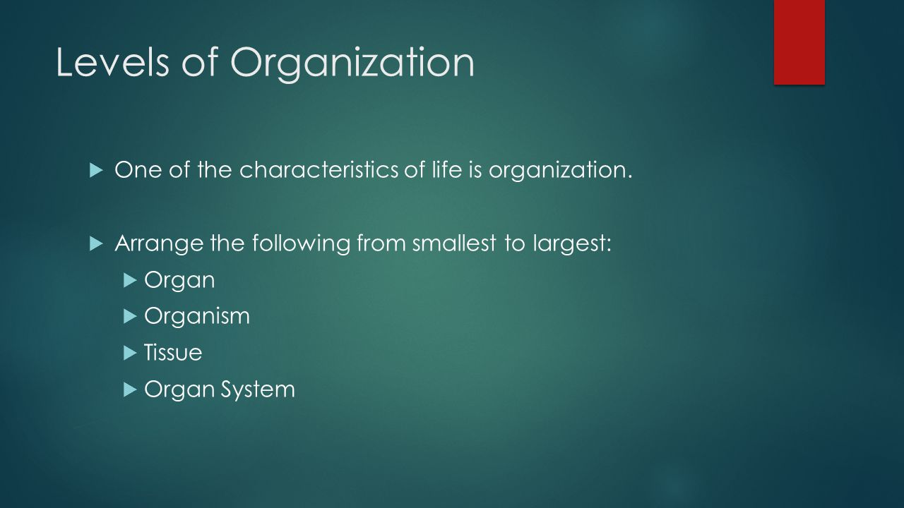 Levels of Organization  One of the characteristics of life is organization.