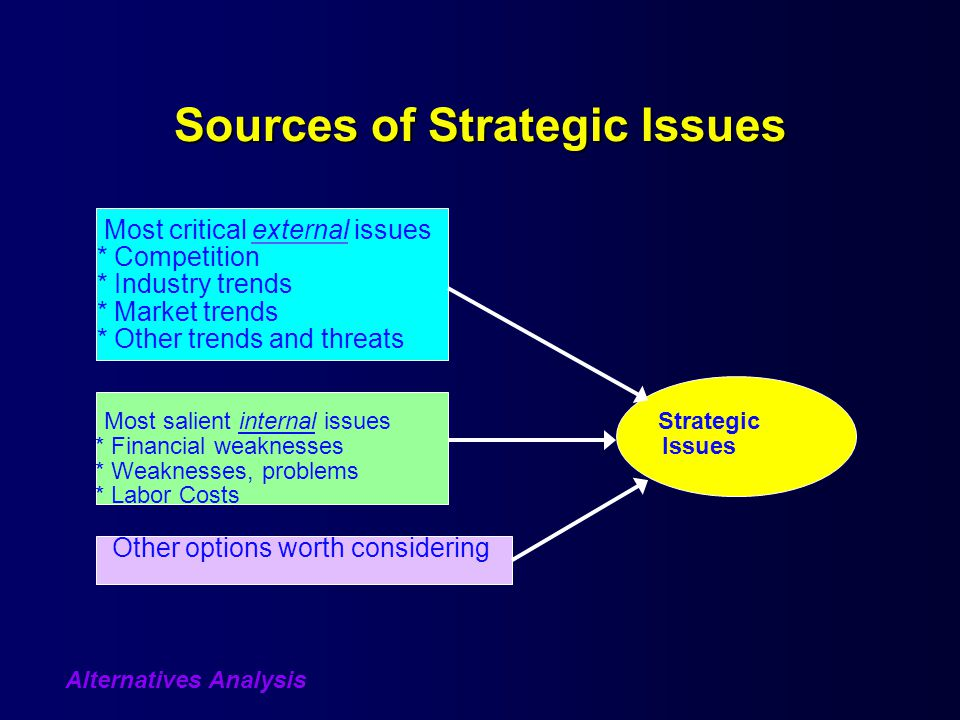 Sources of Strategic Issues Most critical external issues * Competition * Industry trends * Market trends * Other trends and threats Most salient internal issuesStrategic * Financial weaknesses Issues * Weaknesses, problems * Labor Costs Other options worth considering Alternatives Analysis