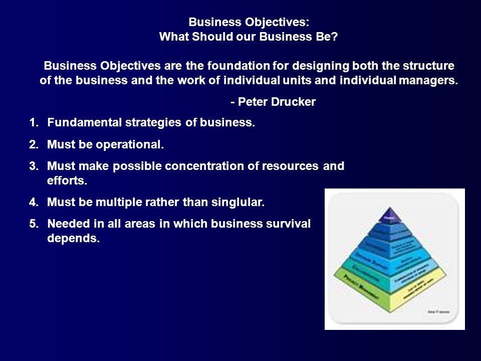 Business Objectives: What Should our Business Be.