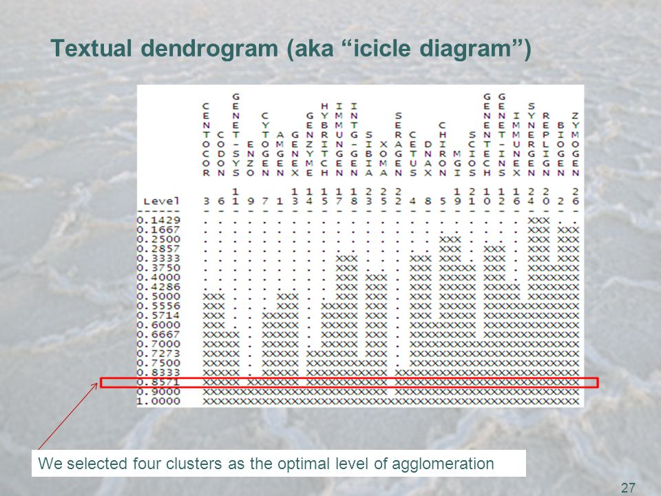 27 Textual dendrogram (aka icicle diagram ) We selected four clusters as the optimal level of agglomeration