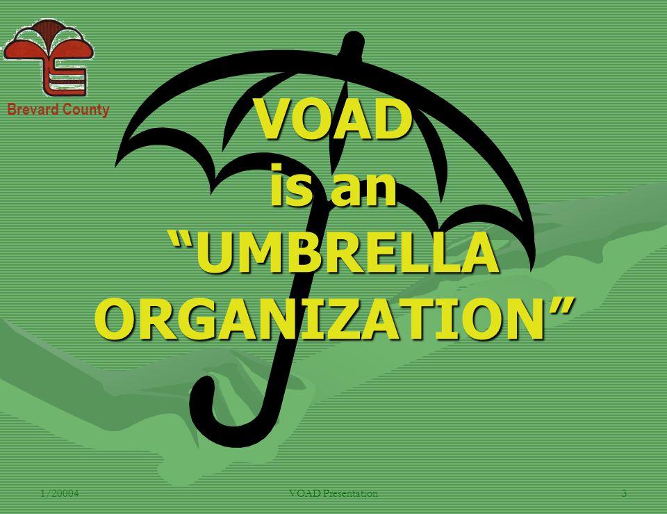 Brevard County 1/20004VOAD Presentation3 VOAD is an UMBRELLA ORGANIZATION