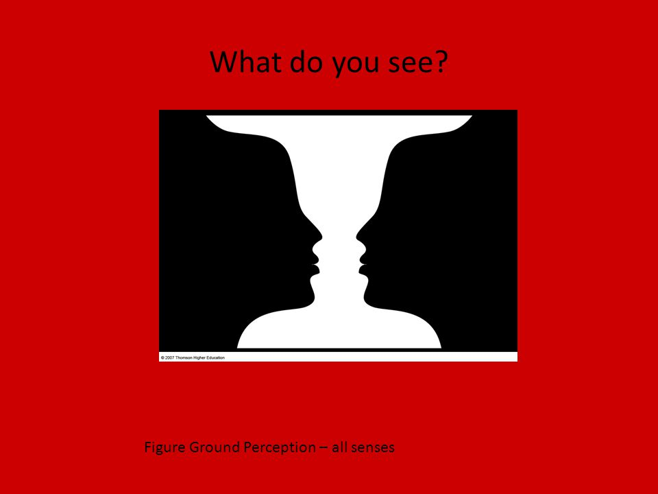 What do you see Figure Ground Perception – all senses