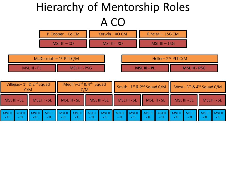 Hierarchy of Mentorship Roles A CO MSL III - SCM West– 3 rd & 4 th Squad C/MSmith– 1 st & 2 nd Squad C/M Heller– 2 nd PLT C/M MSL III – 1SGMSL III - XOMSL III – CO Kerwin – XO CMP.