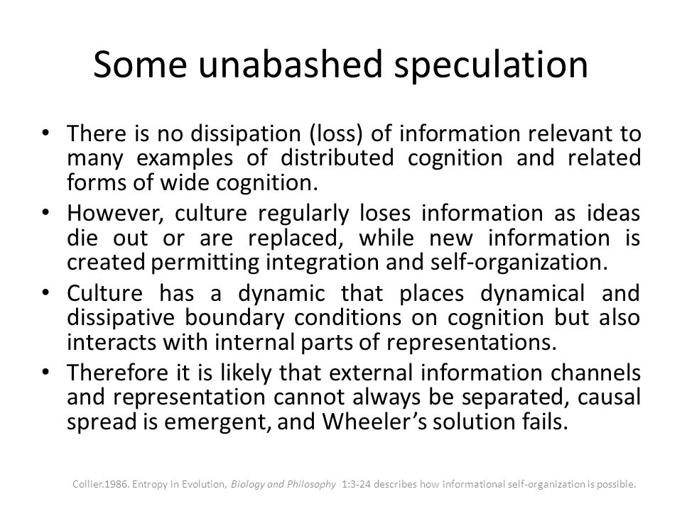 Some unabashed speculation There is no dissipation (loss) of information relevant to many examples of distributed cognition and related forms of wide