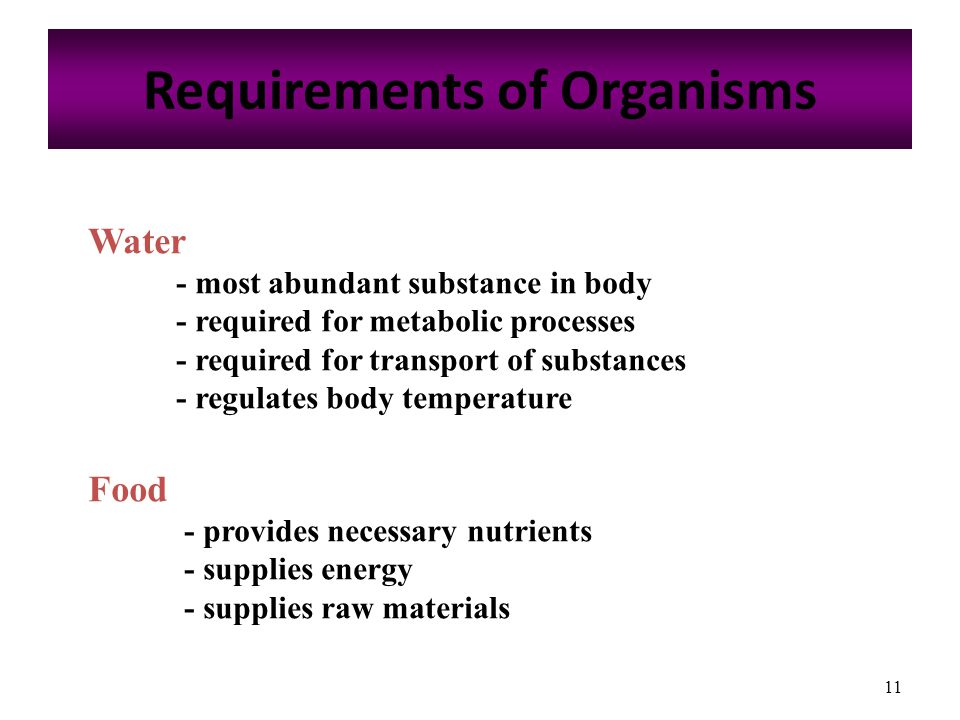 11 Requirements of Organisms Water - most abundant substance in body - required for metabolic processes - required for transport of substances - regulates body temperature Food - provides necessary nutrients - supplies energy - supplies raw materials