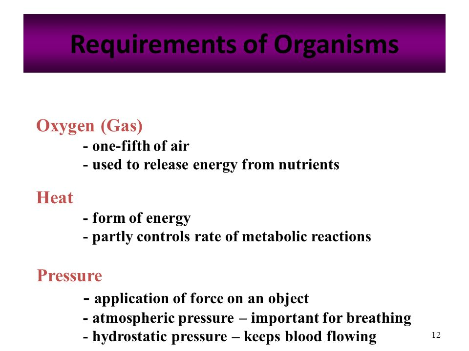 12 Requirements of Organisms Oxygen (Gas) - one-fifth of air - used to release energy from nutrients Heat - form of energy - partly controls rate of metabolic reactions Pressure - application of force on an object - atmospheric pressure – important for breathing - hydrostatic pressure – keeps blood flowing