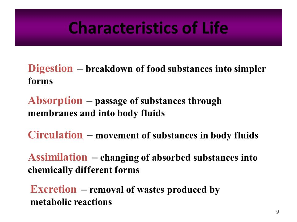 9 Characteristics of Life Absorption – passage of substances through membranes and into body fluids Circulation – movement of substances in body fluids Assimilation – changing of absorbed substances into chemically different forms Excretion – removal of wastes produced by metabolic reactions Digestion – breakdown of food substances into simpler forms