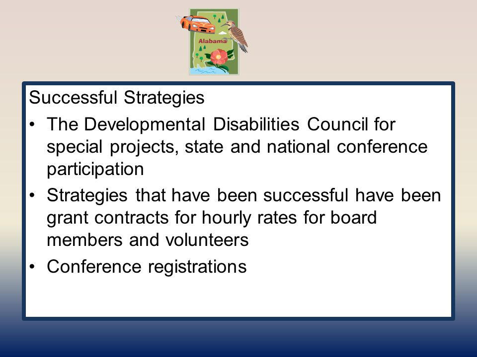 Successful Strategies The Developmental Disabilities Council for special projects, state and national conference participation Strategies that have been successful have been grant contracts for hourly rates for board members and volunteers Conference registrations