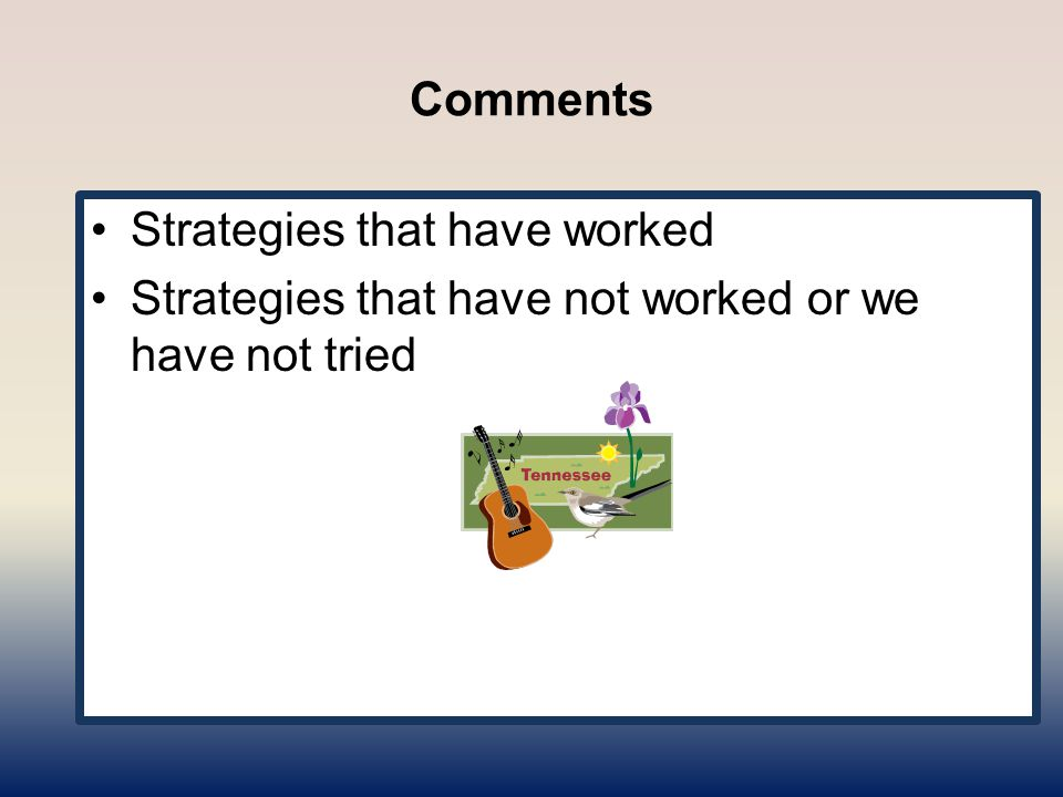 Comments Strategies that have worked Strategies that have not worked or we have not tried