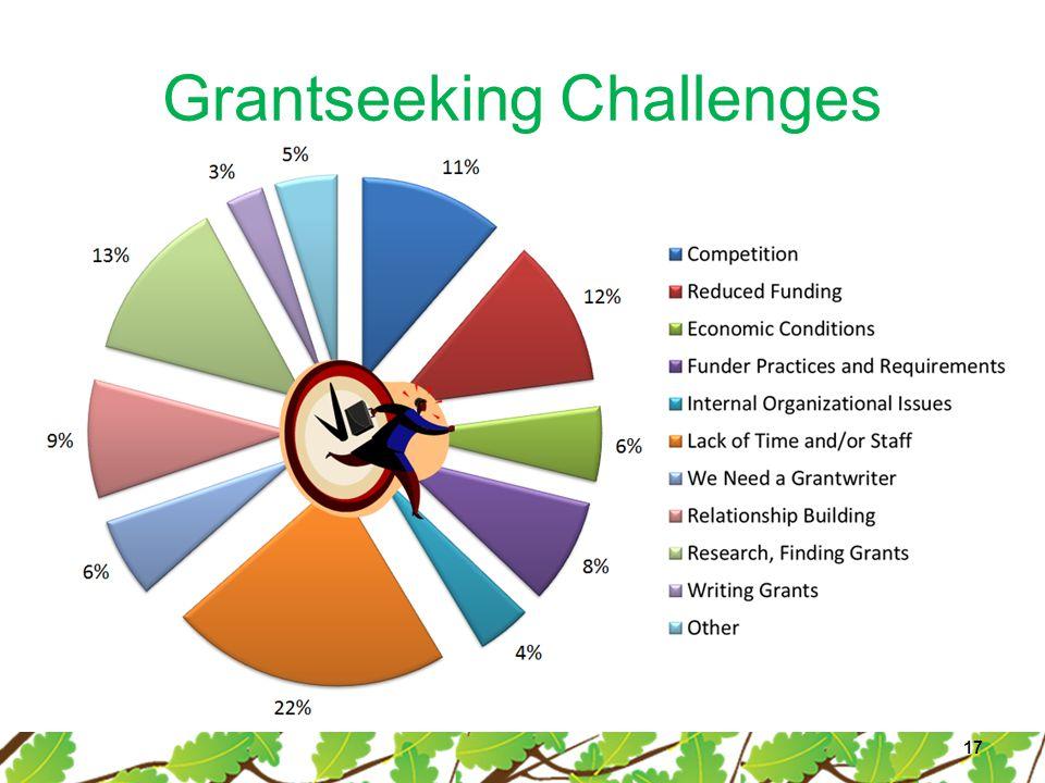 Grantseeking Challenges 17