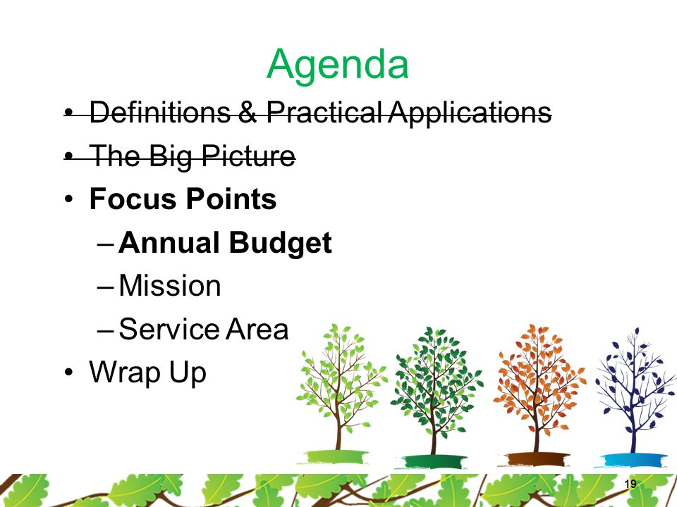 Agenda Definitions & Practical Applications The Big Picture Focus Points –Annual Budget –Mission –Service Area Wrap Up 19