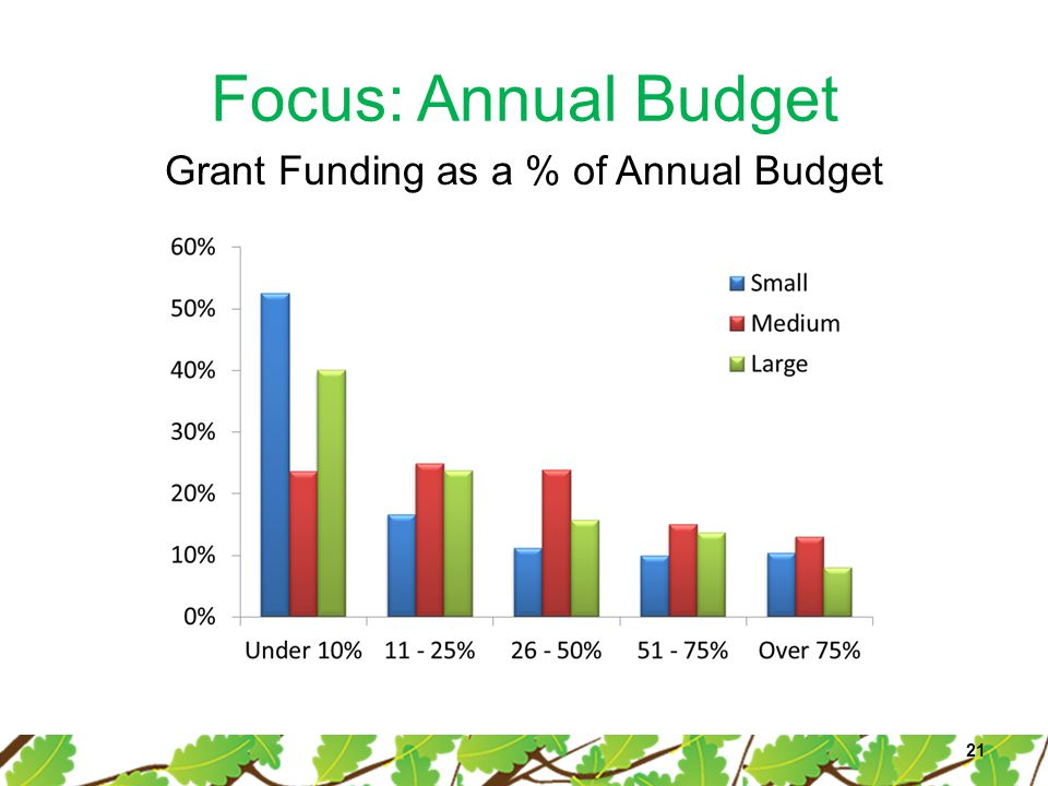 Focus: Annual Budget 21 Grant Funding as a % of Annual Budget