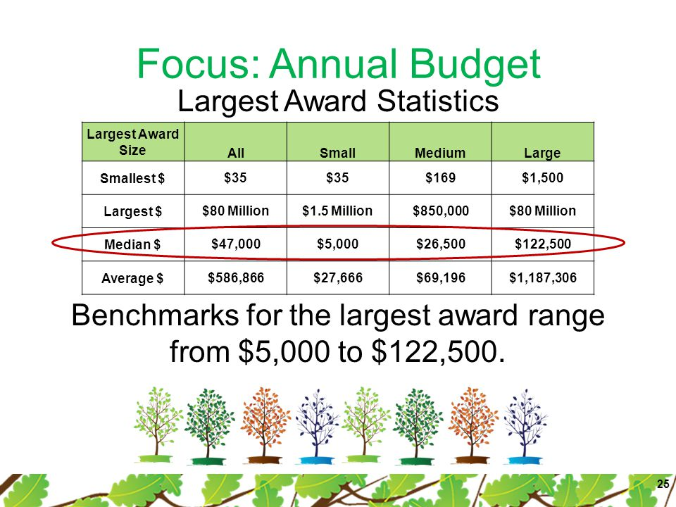 Focus: Annual Budget Largest Award Size AllSmallMediumLarge Smallest $$35 $169$1,500 Largest $$80 Million$1.5 Million$850,000$80 Million Median $$47,0
