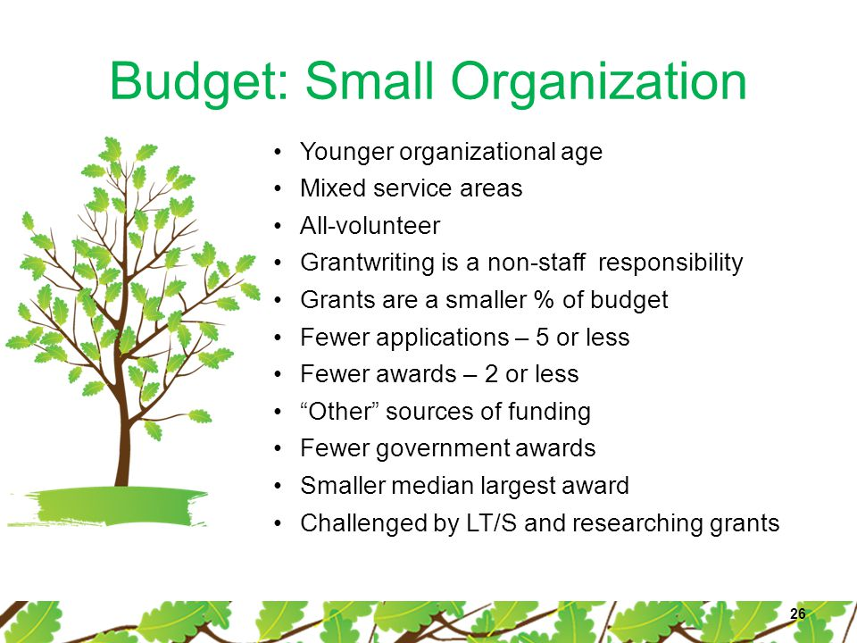 Budget: Small Organization 26 Younger organizational age Mixed service areas All-volunteer Grantwriting is a non-staff responsibility Grants are a sma