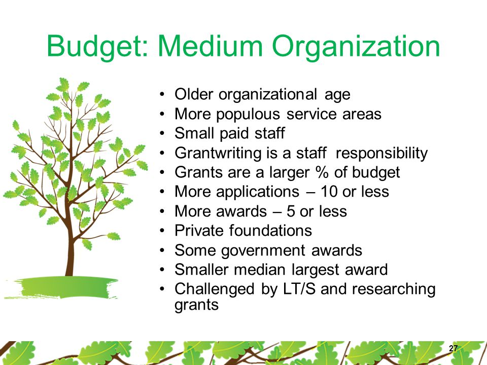 Budget: Medium Organization 27 Older organizational age More populous service areas Small paid staff Grantwriting is a staff responsibility Grants are