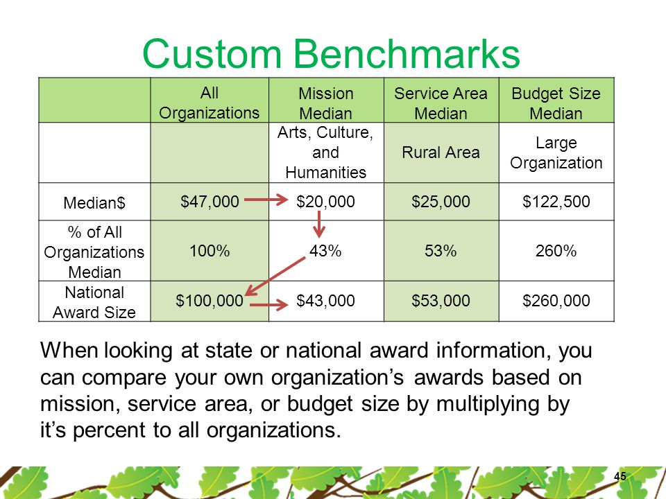 Custom Benchmarks 45 All Organizations Mission Median Service Area Median Budget Size Median Arts, Culture, and Humanities Rural Area Large Organizati