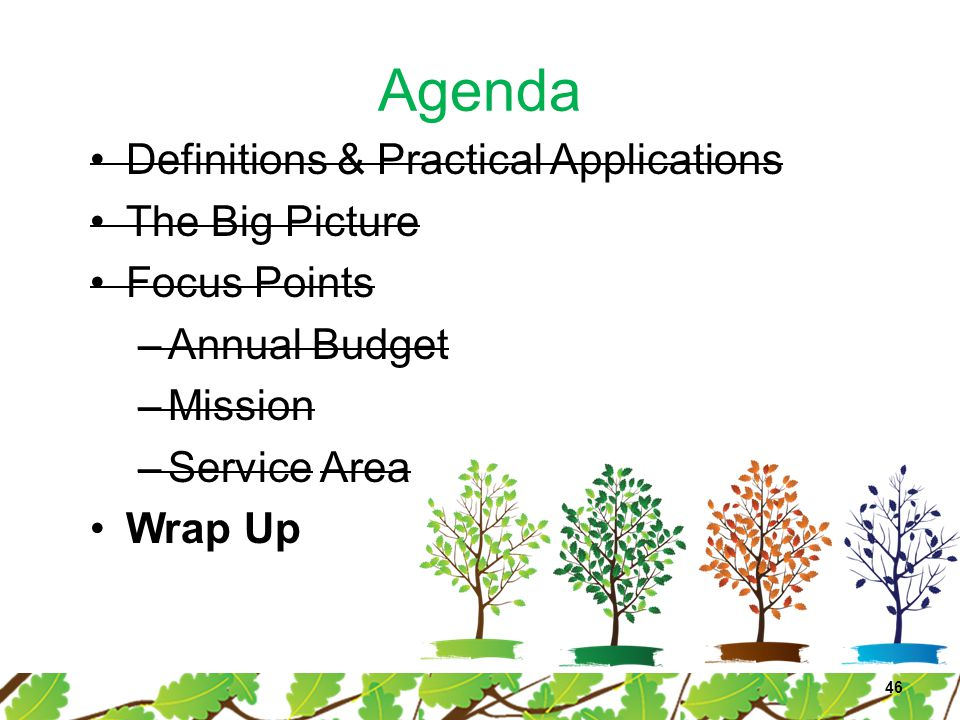 Agenda Definitions & Practical Applications The Big Picture Focus Points –Annual Budget –Mission –Service Area Wrap Up 46