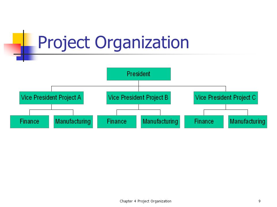 Chapter 4 Project Organization9 Project Organization