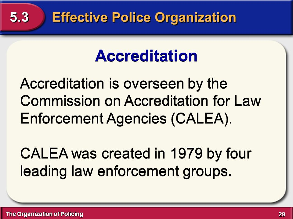 The Organization of Policing 29 Effective Police Organization 5.3 Accreditation Accreditation is overseen by the Commission on Accreditation for Law E