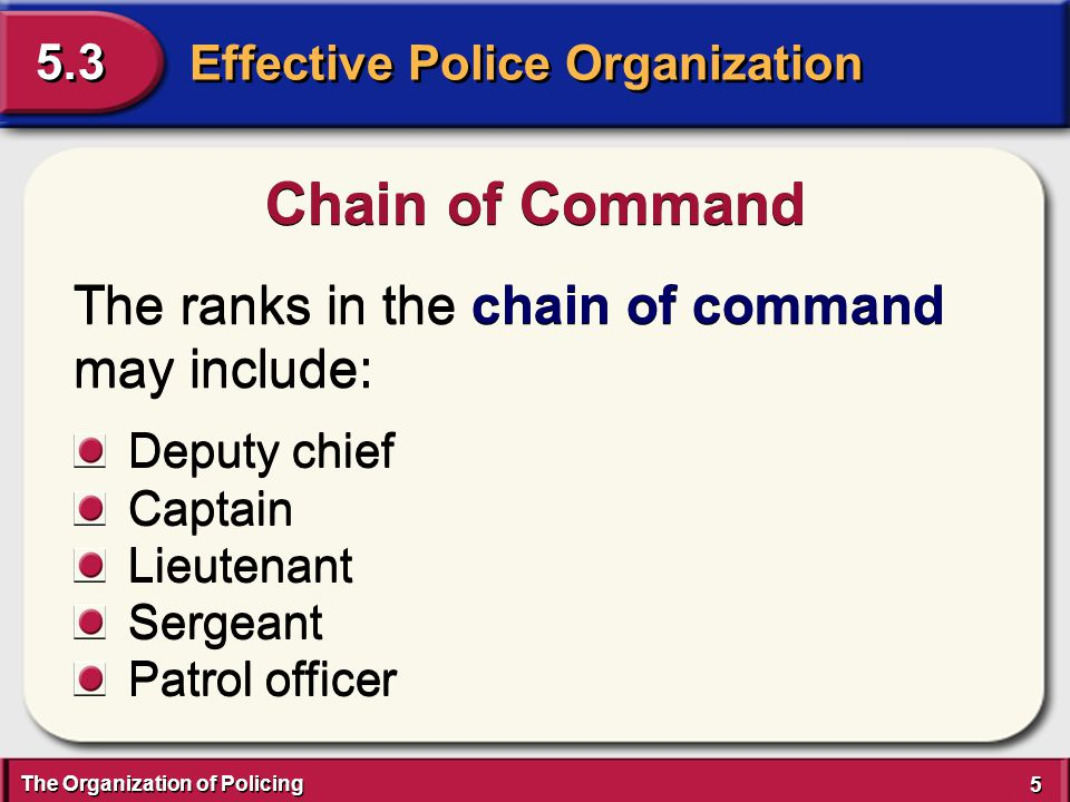The Organization of Policing 6 6 Effective Police Organization 5.3 Chain of Command A police department's order of authority, which begins at the top of the pyramid with the chief or sheriff and flows downward to the next level or echelon.