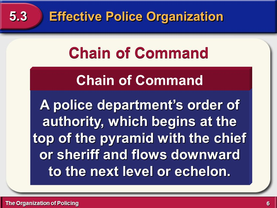 The Organization of Policing 17 Effective Police Organization 5.3 Staff Functions Policing functions that encompass activities provided in support of field operations.