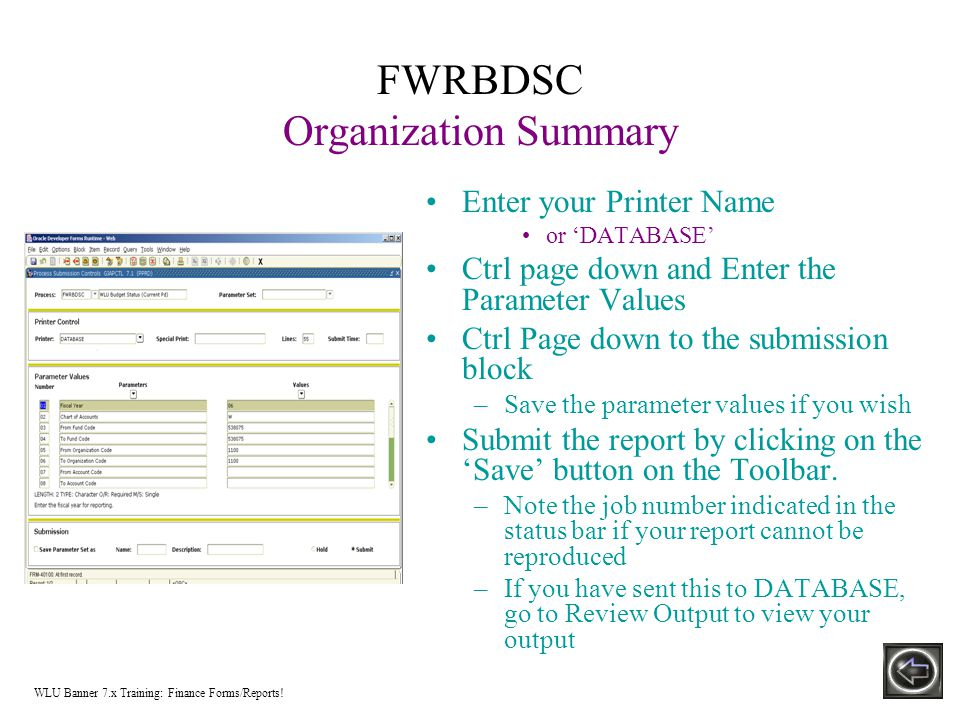 FWRBDSC Organization Summary Enter your Printer Name or 'DATABASE' Ctrl page down and Enter the Parameter Values Ctrl Page down to the submission block –Save the parameter values if you wish Submit the report by clicking on the 'Save' button on the Toolbar.