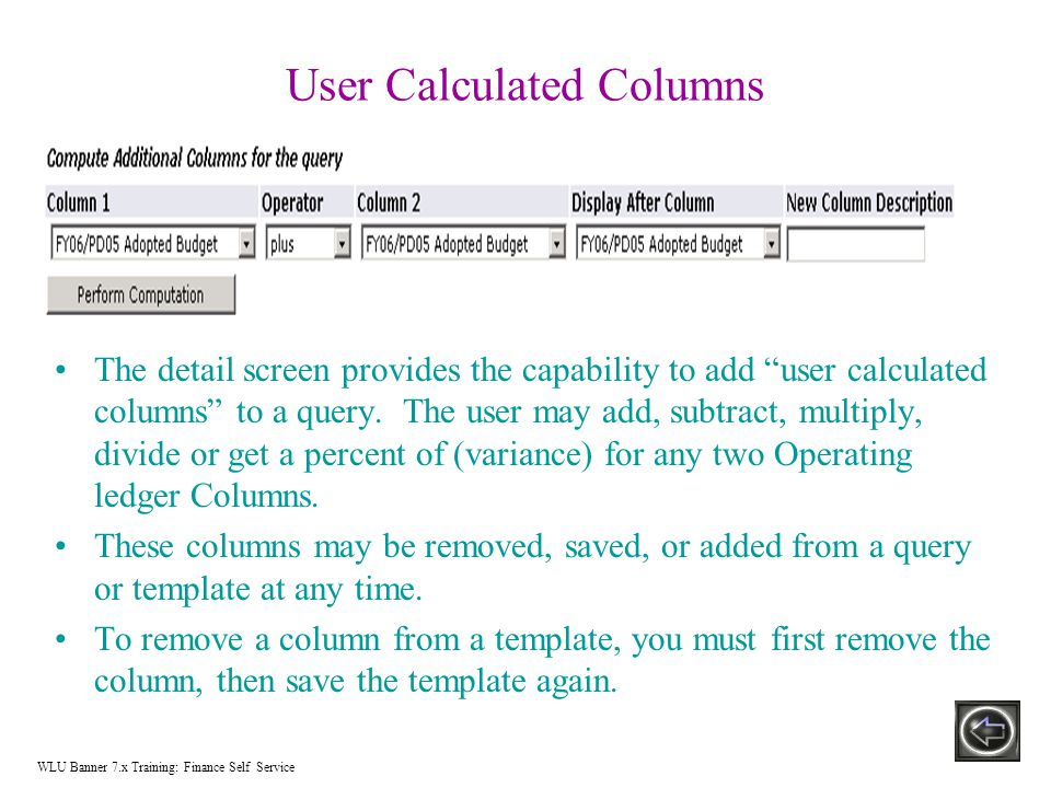 User Calculated Columns The detail screen provides the capability to add user calculated columns to a query.