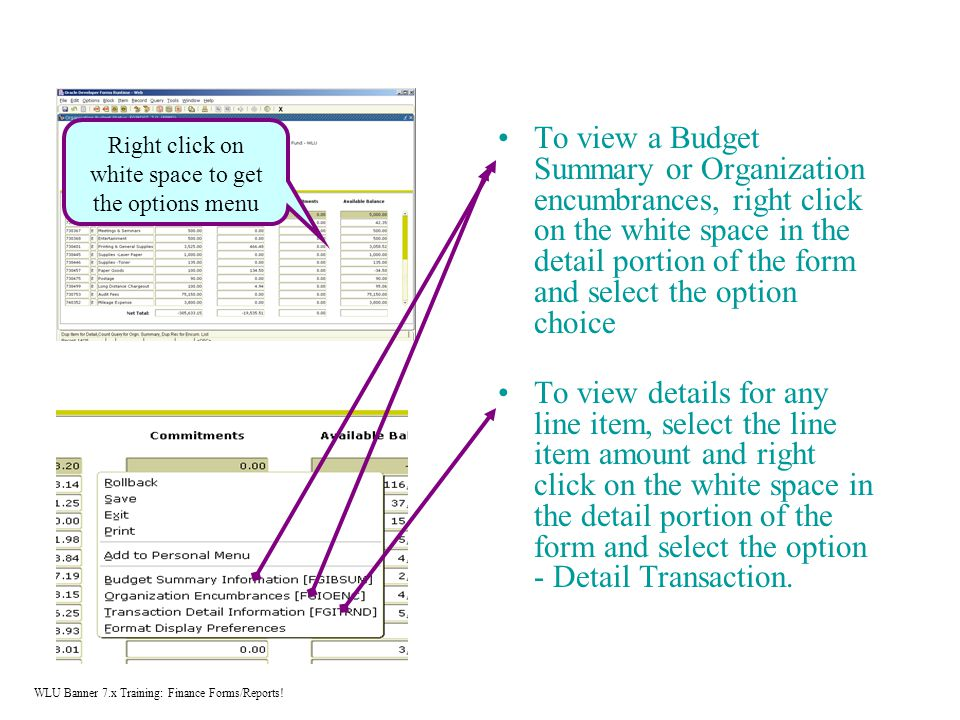 To view a Budget Summary or Organization encumbrances, right click on the white space in the detail portion of the form and select the option choice To view details for any line item, select the line item amount and right click on the white space in the detail portion of the form and select the option - Detail Transaction.