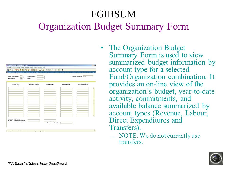 FGIBSUM Organization Budget Summary Form The Organization Budget Summary Form is used to view summarized budget information by account type for a selected Fund/Organization combination.