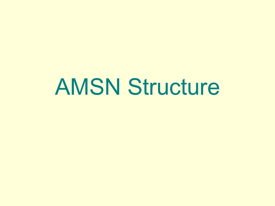 AMSN Structure