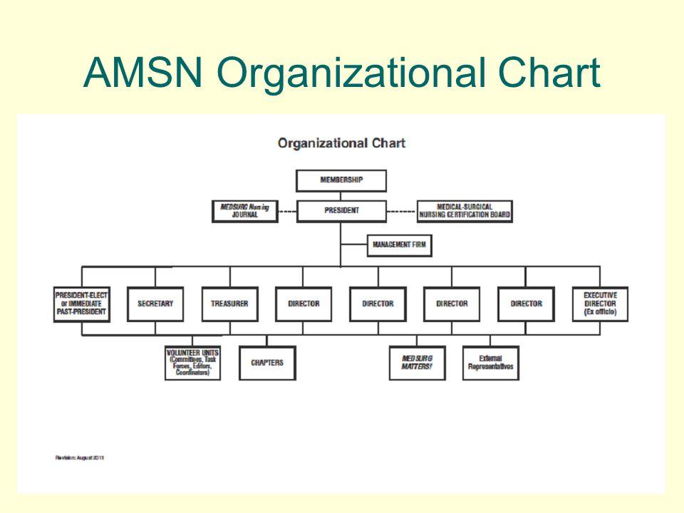 AMSN Organizational Chart