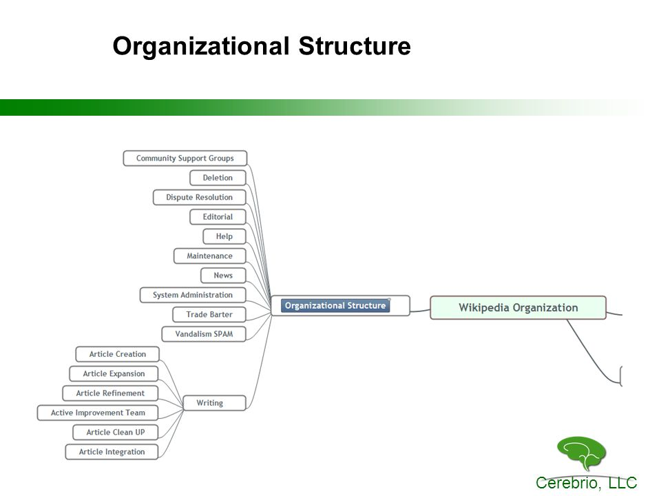 Cerebrio, LLC Organizational Structure