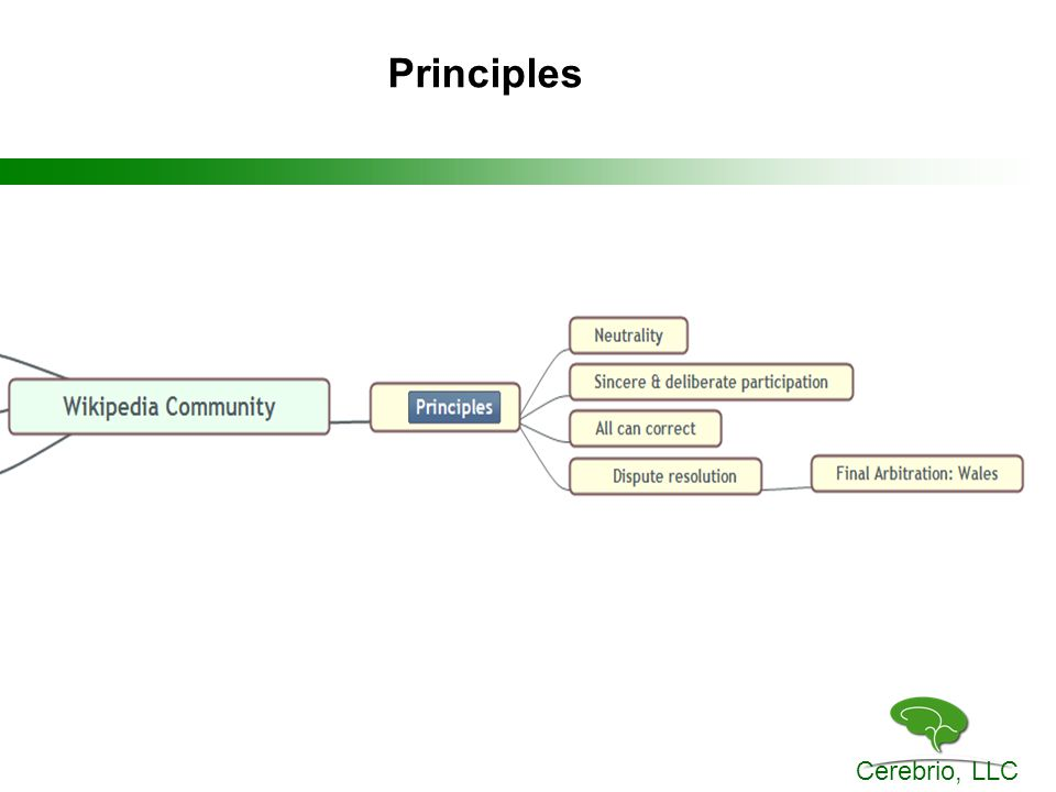 Cerebrio, LLC Principles