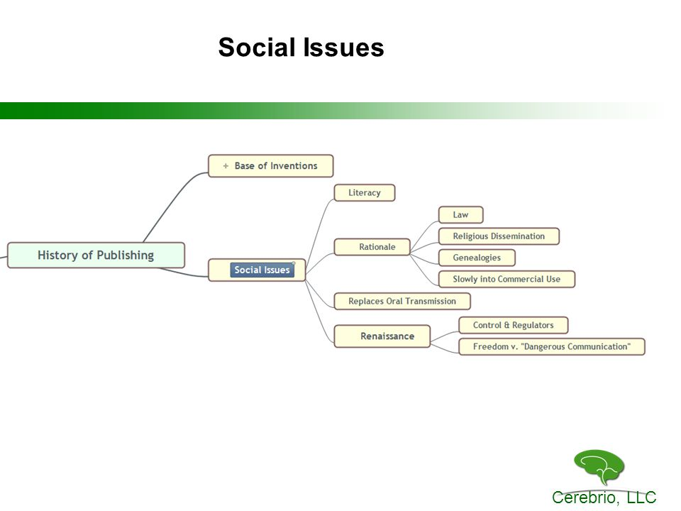 Cerebrio, LLC Social Issues