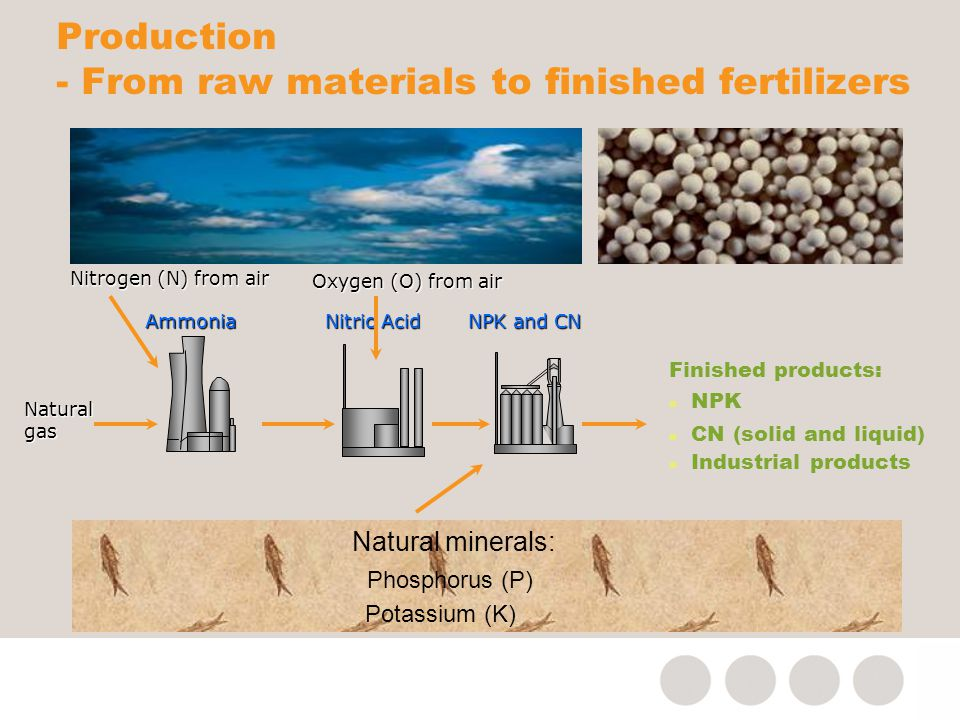 Production - From raw materials to finished fertilizers Ammonia Finished products: n NPK n CN (solid and liquid) n Industrial products Natural gas Nitrogen (N) from air Natural minerals: Phosphorus (P) Potassium (K) Nitric Acid NPK and CN Oxygen (O) from air