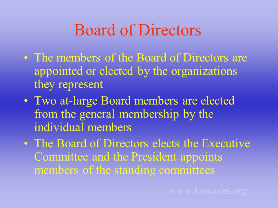 Board of Directors The members of the Board of Directors are appointed or elected by the organizations they represent Two at-large Board members are elected from the general membership by the individual members The Board of Directors elects the Executive Committee and the President appoints members of the standing committees www.ksscaves.org