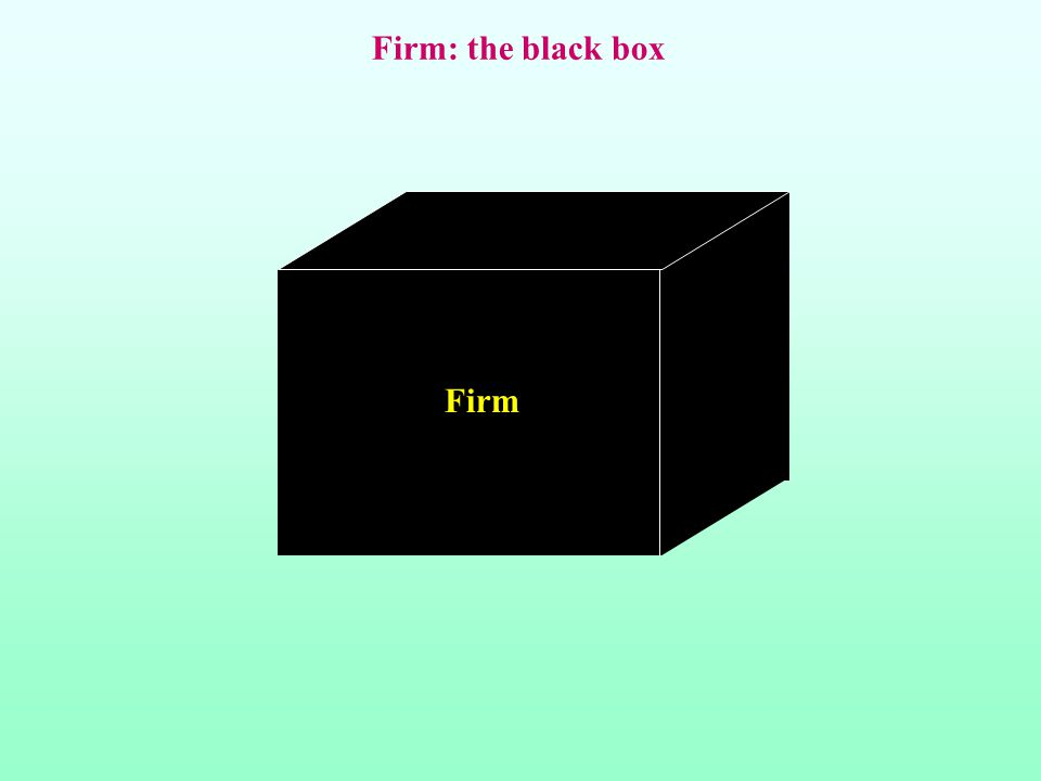 Firm: the black box Firm