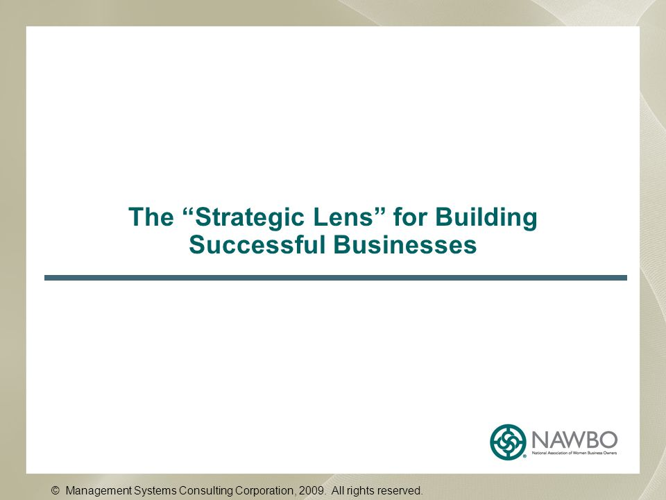The Strategic Lens for Building Successful Businesses © Management Systems Consulting Corporation, 2009.