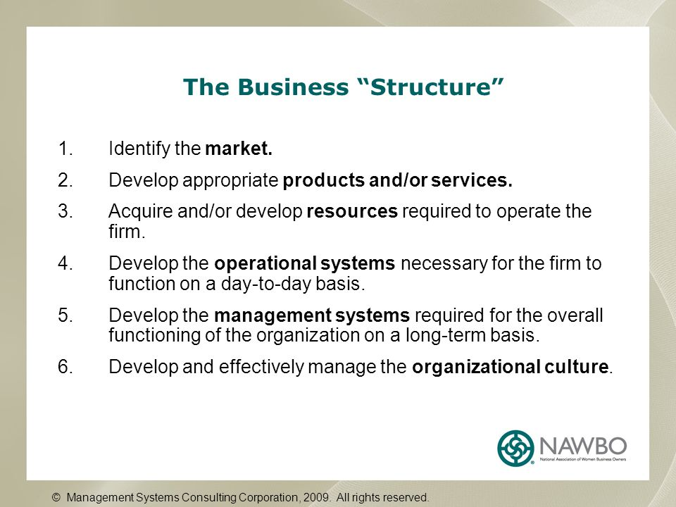 """The Business """"Structure"""" 1.Identify the market. 2.Develop appropriate products and/or services. 3.Acquire and/or develop resources required to operate"""