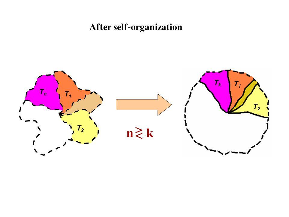 After self-organization n k TnTn T1T1 T2T2 T1T1 T2T2 TkTk > <