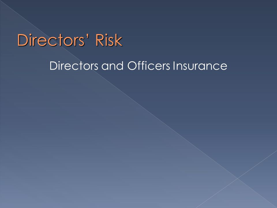 Directors' Risk Directors and Officers Insurance