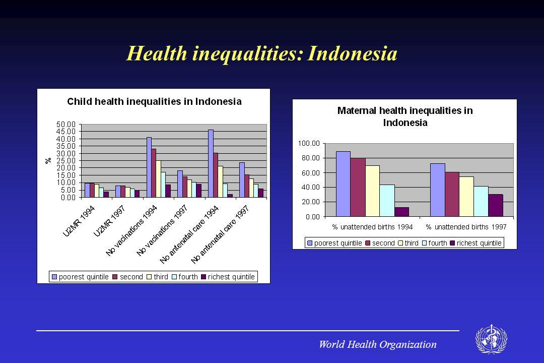 World Health Organization Health inequalities: Indonesia