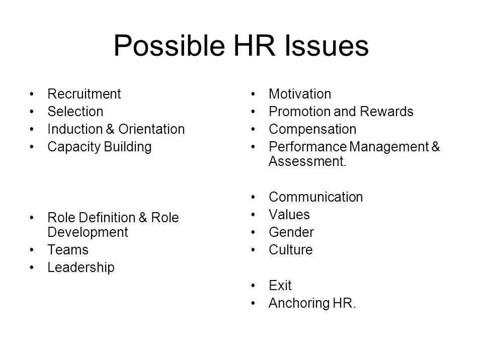 Possible HR Issues Recruitment Selection Induction & Orientation Capacity Building Role Definition & Role Development Teams Leadership Motivation Prom