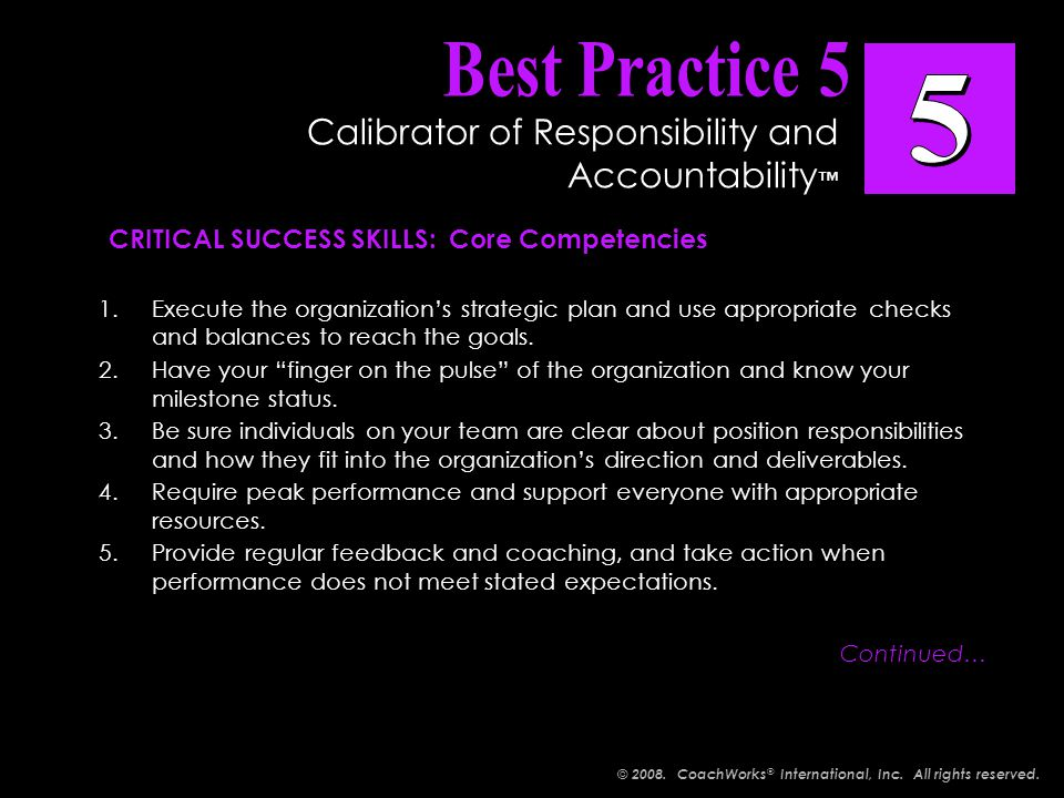 1.Execute the organization's strategic plan and use appropriate checks and balances to reach the goals.