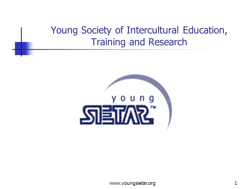 www.youngsietar.org12 Young SIETAR Projects To Get Involved In Here is an overview of projects groups: Annual International Congress Workshops Newsletter – The Young Sietarian Mentorship Programme Intercultural Database Marketing Research Sponsorship Internal Website Finances