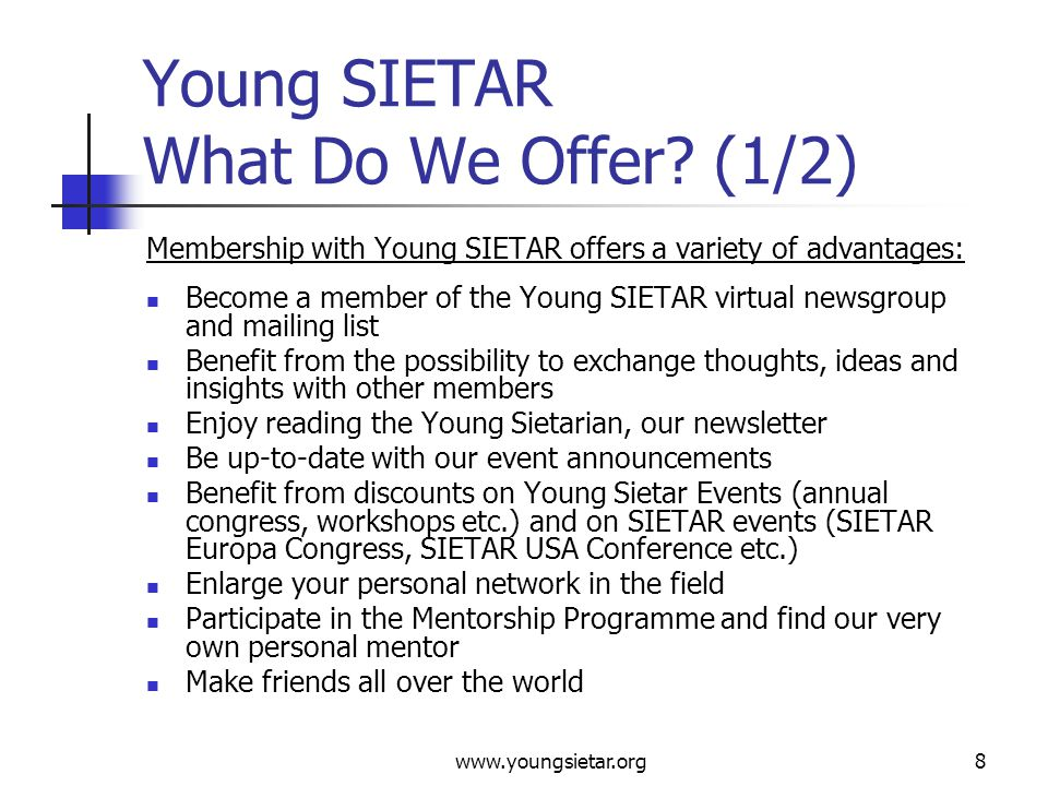 www.youngsietar.org8 Young SIETAR What Do We Offer.