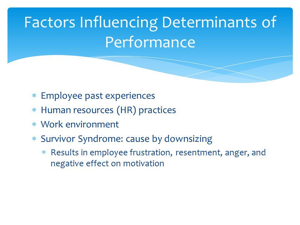  Employee past experiences  Human resources (HR) practices  Work environment  Survivor Syndrome: cause by downsizing  Results in employee frustra