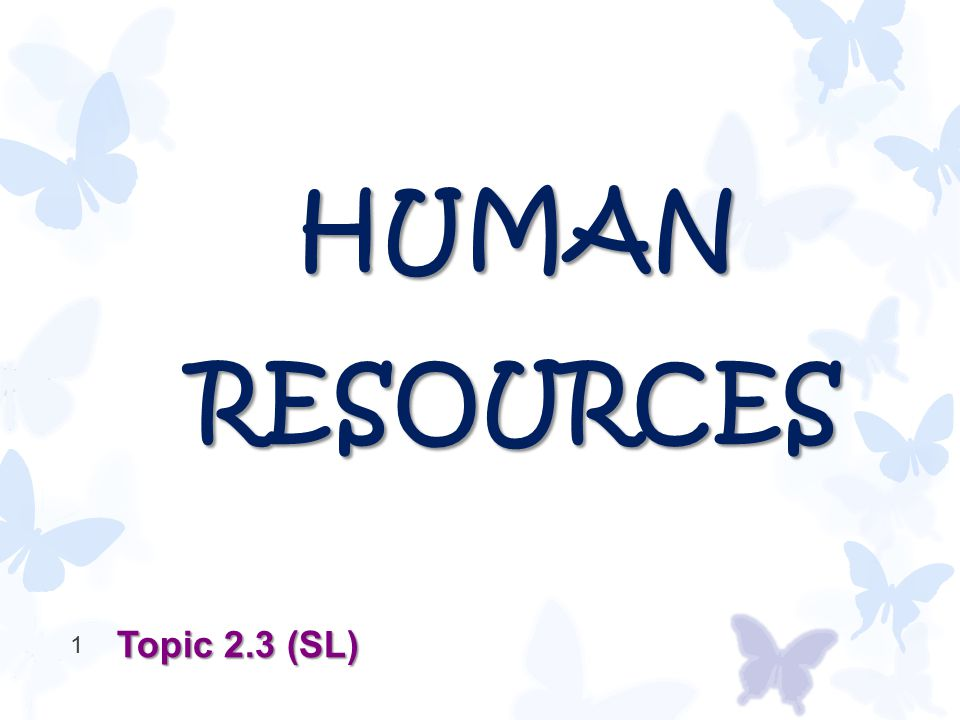 HUMAN RESOURCES Topic 2.3 (SL) 1